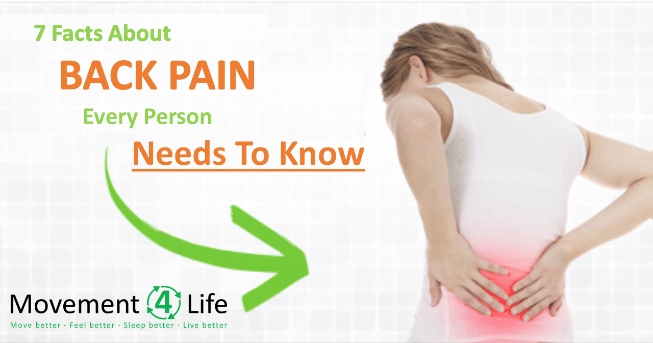 7 Facts About Back Pain Every Person Needs To Know Movement 4 LIfe Physical Therapy Manchester Ballwin 63011