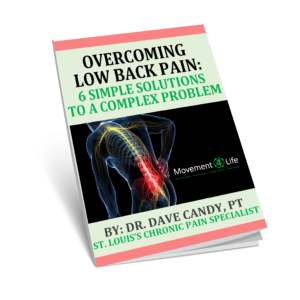 Low Back L4 L5 S1 Disc Pain Ebook Cover